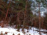 Veľký (1,8 ha) lesný pozemok Osadné / Snina