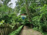 Na predaj lesný pozemok v Gabčíkove