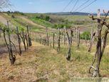 Romantické vinice s pivnicou vo viničnom údolí Gbeliec