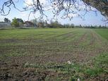 Predaj rekreačný pozemok  v Hamuliakove pri Hrádzi