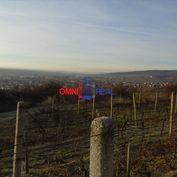 Obrábaný vinohrad Limbach - 40 árov
