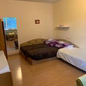 1 izbovy byt + kuchyna