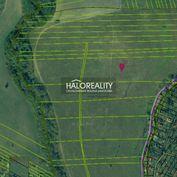 HALO reality - Predaj, pozemok 25513 m2 Rimavská Sobota, Tormáš - ZNÍŽENÁ CENA