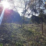 Predaj: rekreačný pozemok Turzovka-Predmier