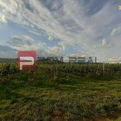 Predaj vinice v Limbachu