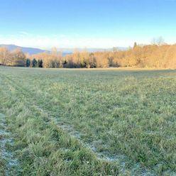 Pozemok 10,-€/m2 na predaj o rozlohe 6250 m2 v obci Klokoč okres Detva