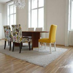 Prenájom -veľký  2 izbový byt v historickom dome, Nitra - centrum