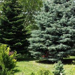 IMPREAL »»» Stupava, časť Obora »» Rodinný dom v peknom prostredí a s nádhernou záhradou » cena 363.