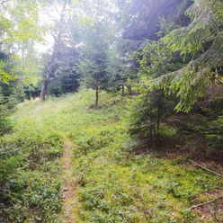 Pozemok na CHATU v krásnej prírode - Raková