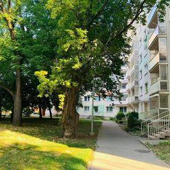 | 1-iz. byt |ul. Hospodárska | 35,23 m2 | PREDAJ | TRNAVA |