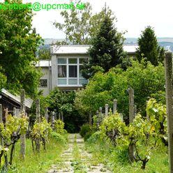 Dom na Zobore s veľkým pozemkom a krásnym výhľadom
