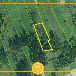 TRI pozemky v Oravskej Lesnej - INVESTIČNÁ PRÍLEŽITOSŤ