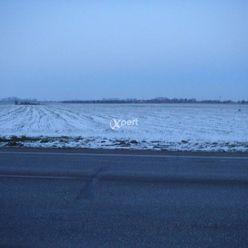 Predám ornú pôdu v okrese Dunajská Streda