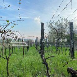 Rekreačná chatka s vinicou, 1070m2