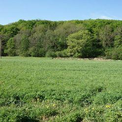 Pozemok 3348 m2 v Chocholnej-Velčiciach časť Pod Tlstou horou