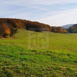 Directreal ponúka Rozľahlý pozemok v tichej doline obce Hrádok.