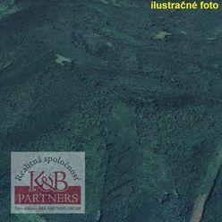 Ponúkame Vám na predaj spoluvlastnícky podiel na pozemkoch ktoré zahŕňajú - lesné pozemky, trvalé tr