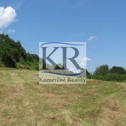 5000 m2 - Lukratívny veľkometrážny pozemok v obci Borčice