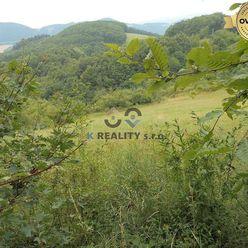 Ponúkame na predaj ornú pôdu v extraviláne obce Zábudišová, 2121 m2