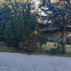 Rodinný dom so záhradou