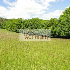 ACT REALITY: EXKLUZÍVNE: pekný slnečný pozemok na samote - obec Kocurany pri Bojniciach, 1902 m2