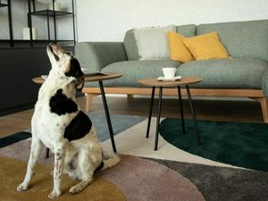 GREEN AVENUE – 1,5i byt, 48 m2, v štandarde, V CENE AJ KUCHYŇA A PARKOVANIE