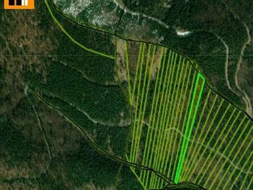 Reality holding+ ponúka Martin Martinské hole lesné pozemky na predaj