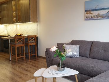 Stýlovo zariadený 2-izbový byt v novostavbe TN-JUH