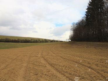 PREDAJ - POZEMOK DOLNÝ LIESKOV - orná pôda: 24,-€/m2