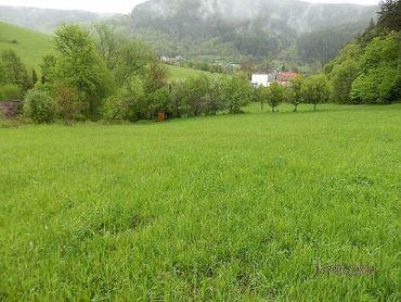 Na predaj veľký pozemok v Brvništi okr. Považská Bystrica