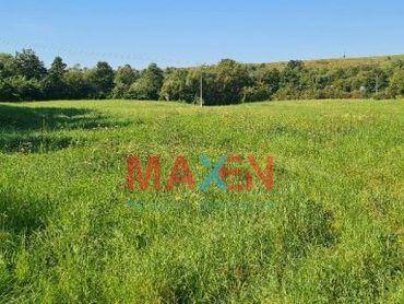 Predaj: pozemok v obci Svinica, Košice - okolie, 19.375m2