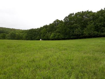 Na predaj rozľahlý pozemok 6166 m2 vo výbornej a tichej lokalite, obec STUPAVA. VHODNÝ ako INEVESTÍC