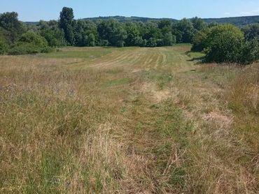 Predávame na predaj veľký pozemok v Radvani nad Dunajom