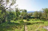Murovaná záhradná chatka pod lesom /442 m2/