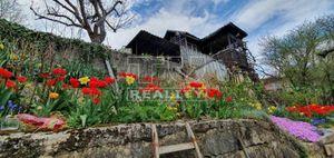 Slnečná a priestranná záhrada na predaj - BB Fončorda, 475m2