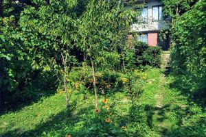Záhrada s chatou