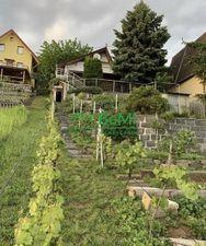 Predaj, rekreačná chata s vinicou, Vinné