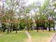 Prenájom 3i byt 68 m2 Ružinov- Goláňova ul., 1. p. - obrázok